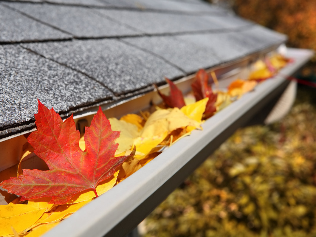 Keep Your Gutters in Peak Condition Year-Round